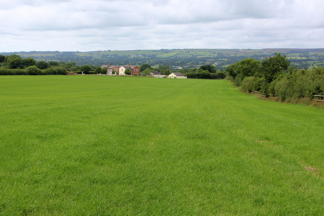Looking across Lush Pasture to Higher Cadshaw