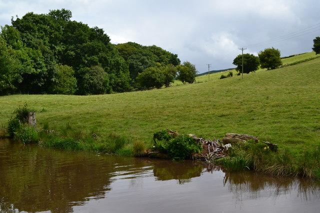 Field beside the Llangynidr top lock