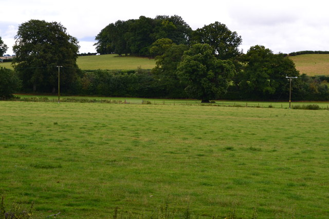 View across field north of Llanfrynach
