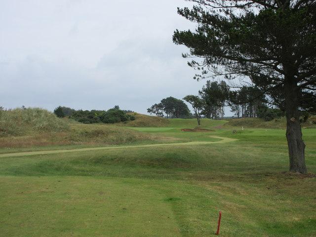 Monifieth Ashludie 6th hole, Thorn Tree