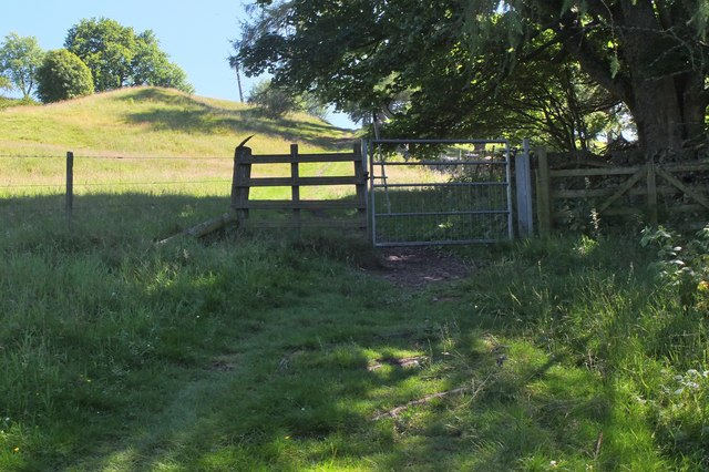 Gate on the Old Drove Road above Peebles