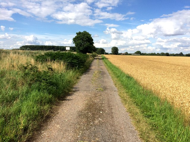 Common Lane (Byway)