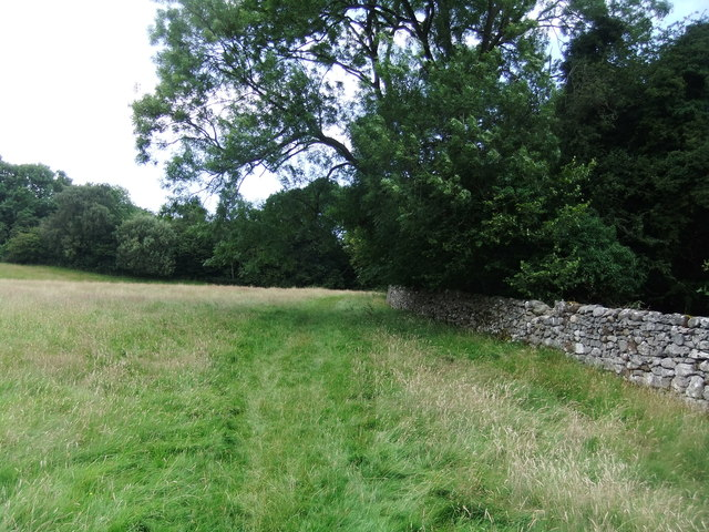 Field path by West Coppice