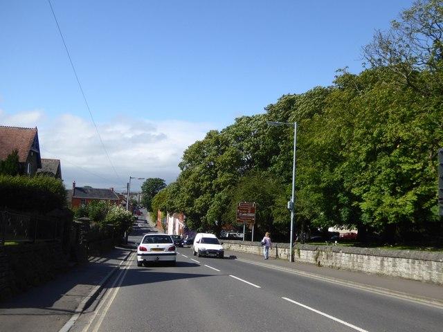 Fisher's Hill, Glastonbury