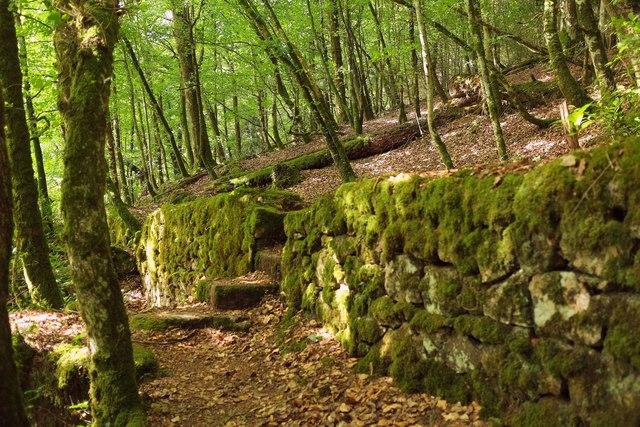 Steps through wall, Gidleigh Park
