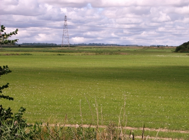 Fields and pastures east of the River Waveney