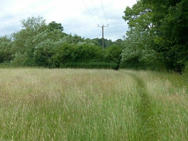 Field footpath near Stanley