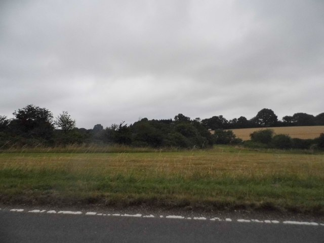 Whipsnade Common