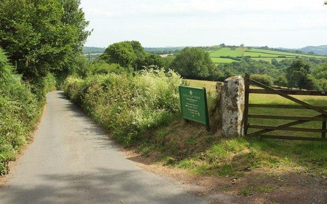Lane at Gidleigh