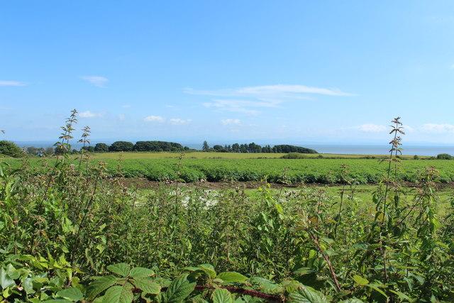 Farmland behind John Paul Jones' Cottage