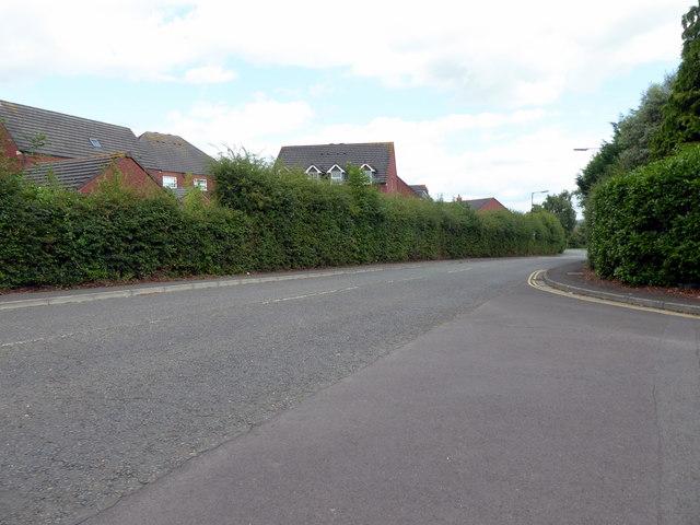 Lodge Lane, Nailsea