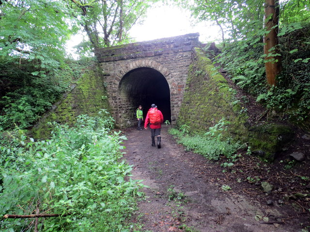 Pont Reilffordd ger Gelli Tarw / Railway bridge near Gelli Tarw