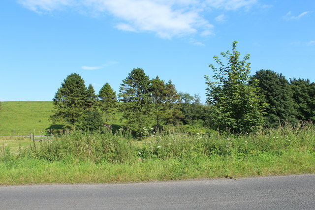 Farmland and Woodland at Kirkbean