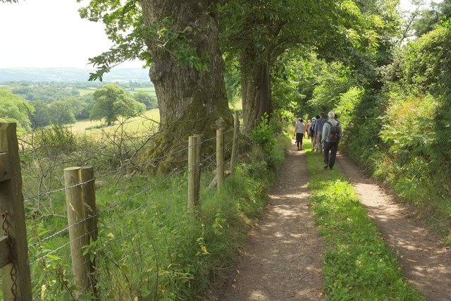 Track to Gidleigh Park