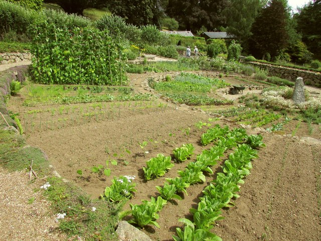 Kitchen garden, Gidleigh Park