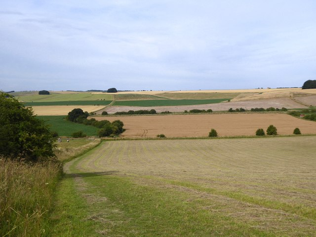 Towards Avebury Down from Waden Hill