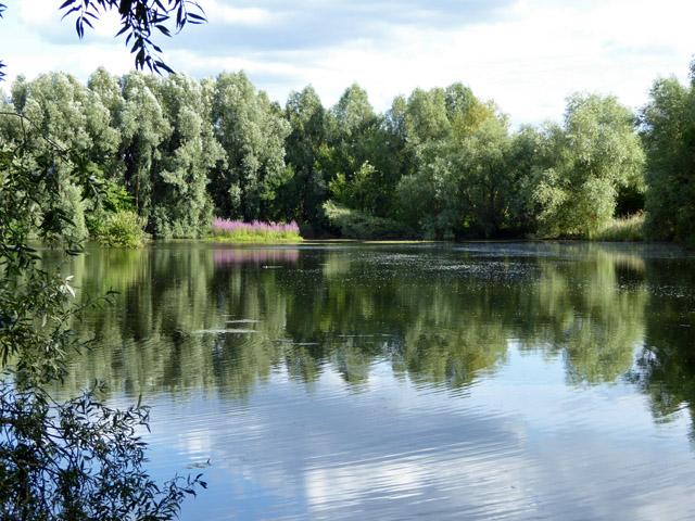One of Church Lammas Lakes