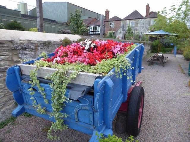Floral trailer