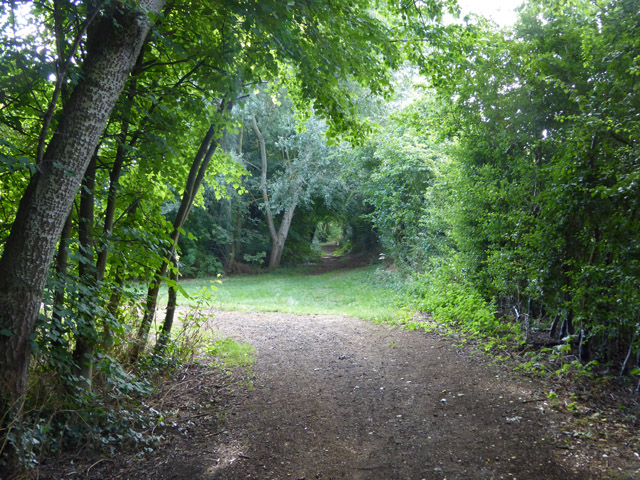 Paths, Church Lammas Lakes