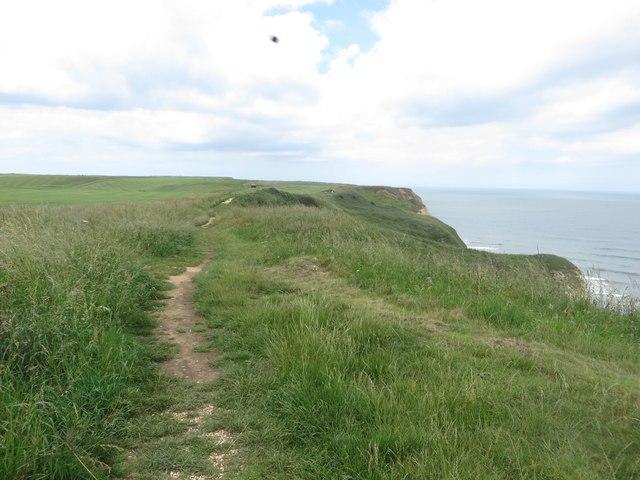 Clifftop footpath north of Flamborough Head