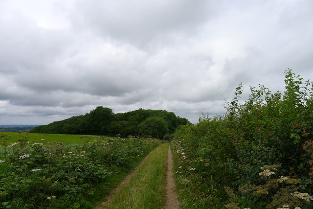 The Cotswold Way approaching Dyrham Wood
