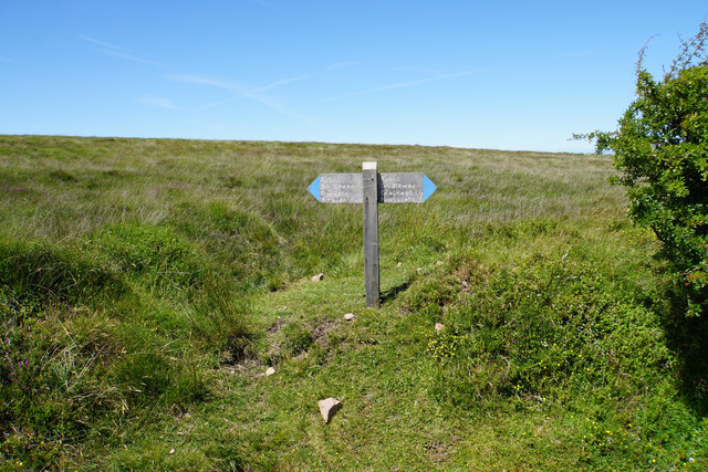 Dunkery Hill where it is crossed by a bridleway