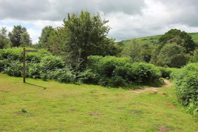 Bridleway to Hound Tor