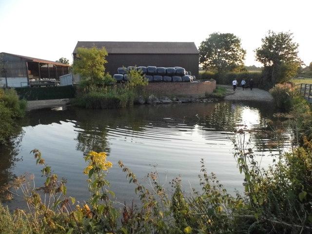 Pond by Redbournbury Mill