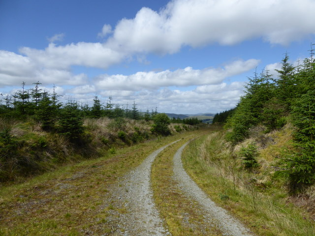 Forestry track, Hitteril Hill