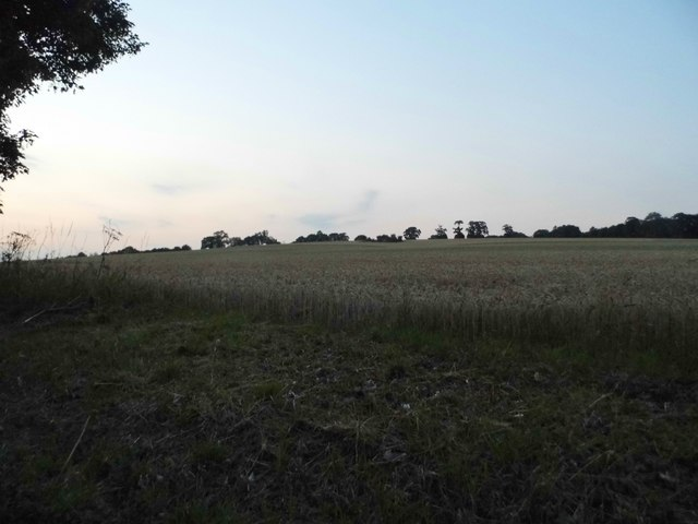 Field by Redbourn Road, St Albans