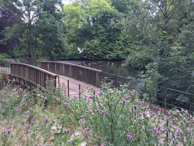 Footbridge at Roath Park Lake