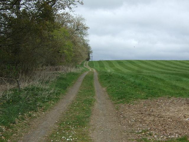 Farm track beside Highcross Plantation