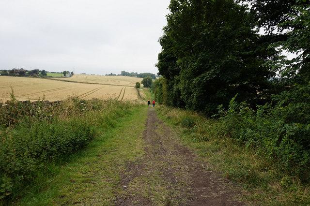 Green Lane off Windy Bank Lane