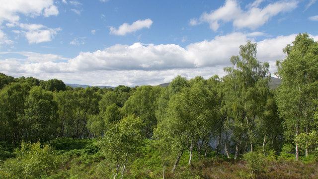 Glimpse of Loch a' Chlarain
