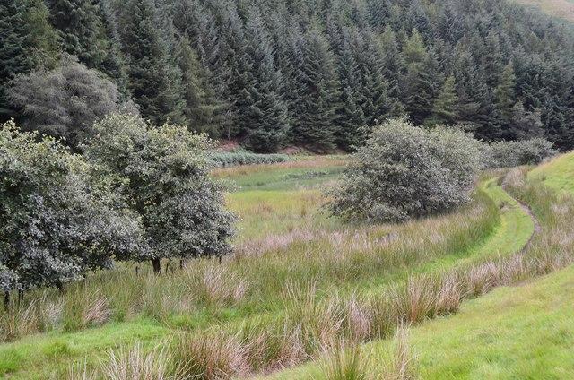 West end of Cowgill Loch
