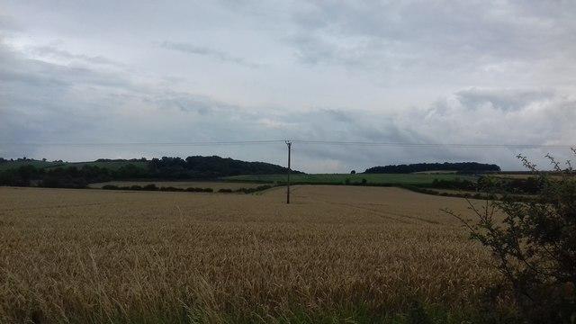 Arable Farmland near Hovingham
