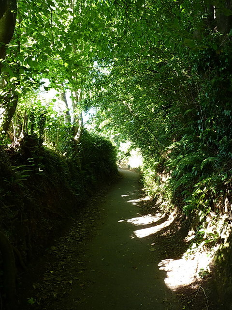 Footpath through 'The Byes'