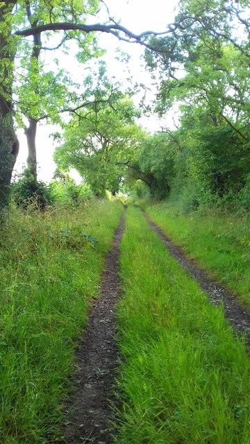 Totten Lane Track