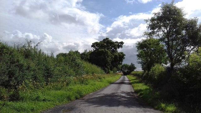 Totten Lane