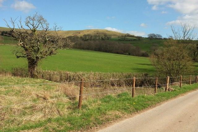 Towards Eggardon Hill