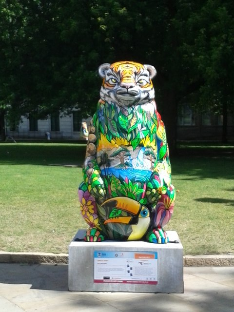 Birmingham Big Sleuth Jungle Jenny Bear