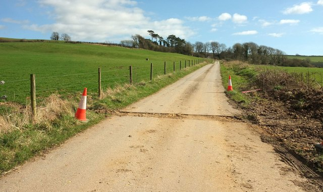 Track to North Eggardon Farm
