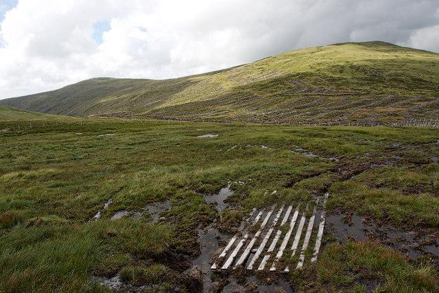 Bog, head of the Calder valley