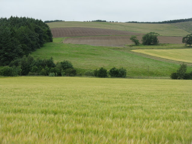 Newly cultivated fields at Cardon