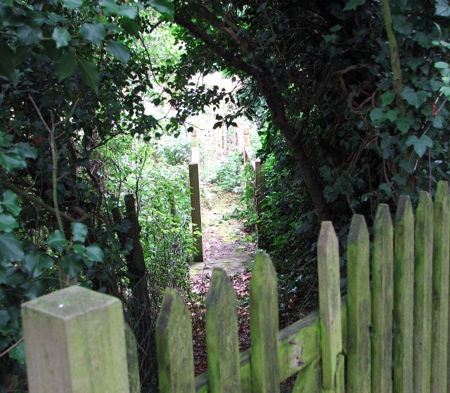 Path and bridge over a drainage ditch