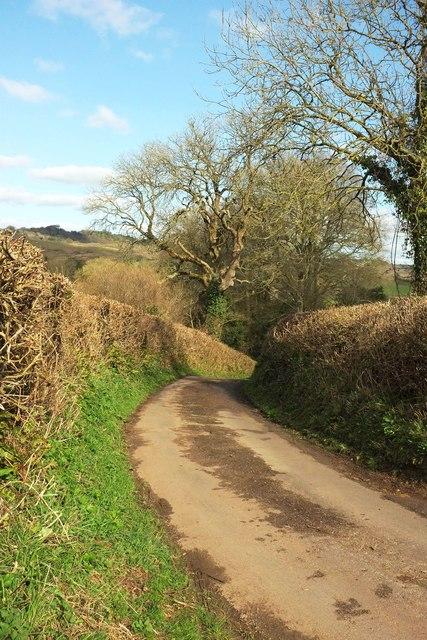 Ruscombe Lane