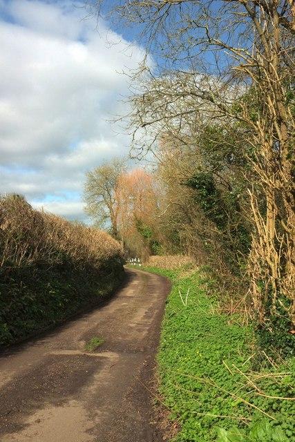 Lane to South Poorton