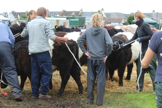 Stranraer Agricultural Show