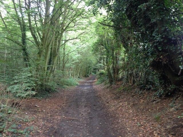 Byway leading from North Dane Way, Lordswood towards Ham Lane, near Hempstead