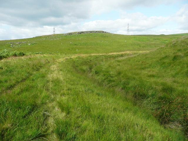 Solomon Cutting, Chelburn Moor